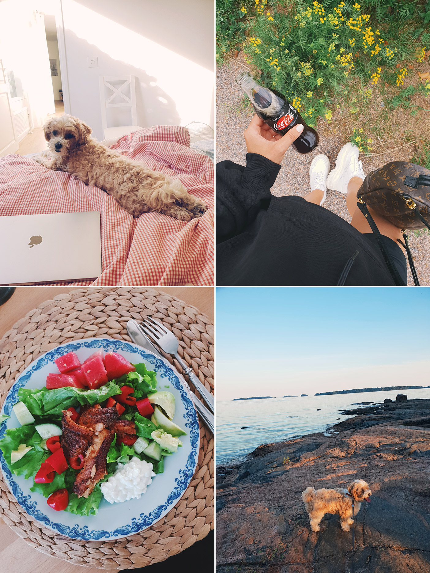 Summer life through my phone